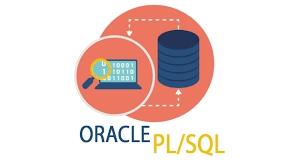 Comprendiendo las características principales de PL / SQL